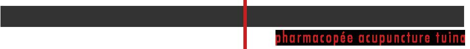 Logo Institut Chuzhen de Medecine Chinoise