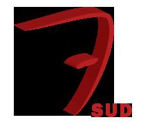 Logo Sept Sud Societe Nouvelle