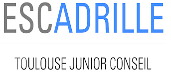 ESCadrille Toulouse Junior Conseil