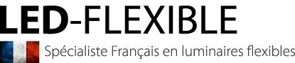 Logo Neon Flexible