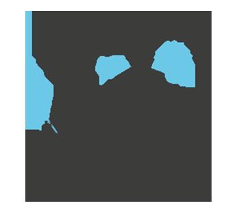 Logo Light In Chaos