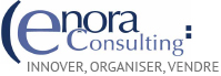 Logo Enora Consulting