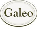 Logo Galeo Concept