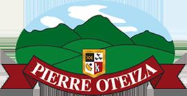Logo Pierre Oteiza