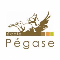 Logo Ecole Pégase Paris