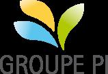 Picardie Investissement SA