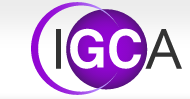 Logo International Generation Conseil & Associes