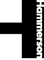 Logo Hammerson Asset Management