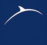 Logo Dauphine Junior Conseil