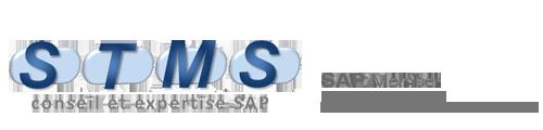 Logo Stms