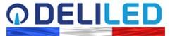 Logo Deliled