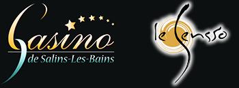 Logo SA Casino