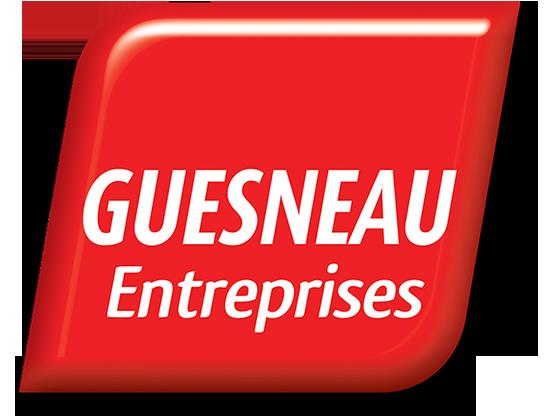 Logo Guesneau Services