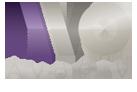 Logo Avo Plv