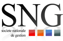 Logo Societe Nationale de Gestion