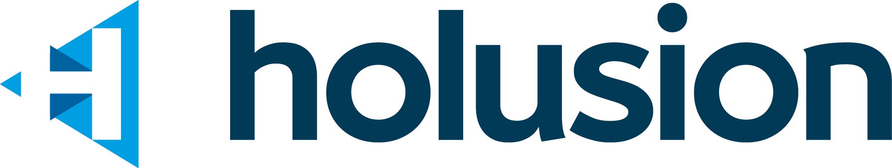 Logo Holusion