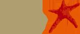 Logo Depnet - Cnsforum