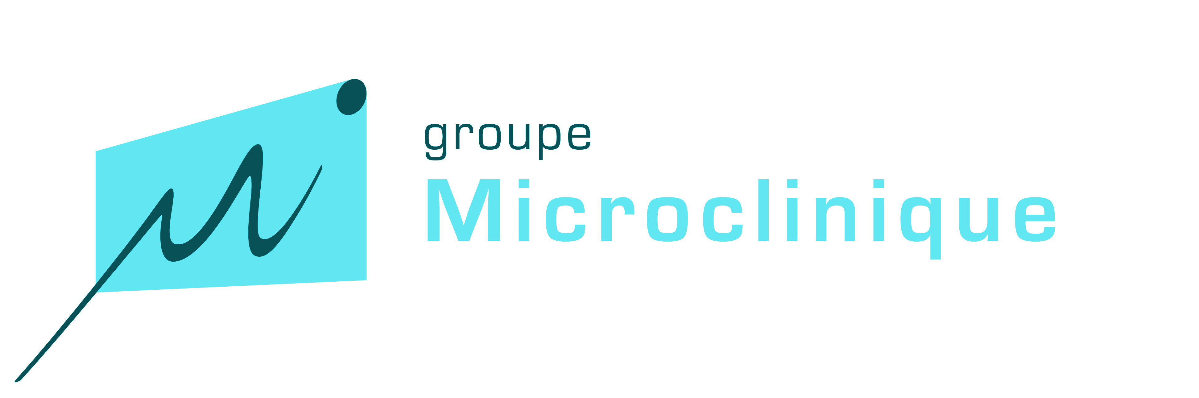 Logo Microclinique