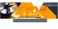 Logo Temis Igm 50