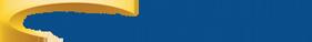 Logo Ntt Security (France)