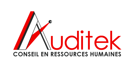 Logo Auditek
