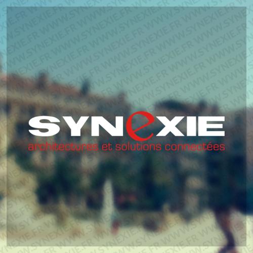 Logo Synexie