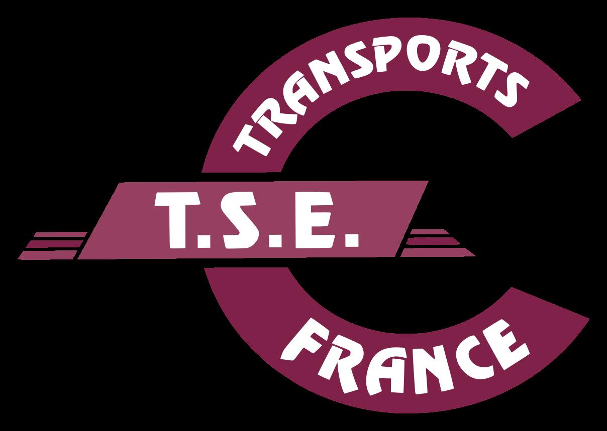 Logo TSE France