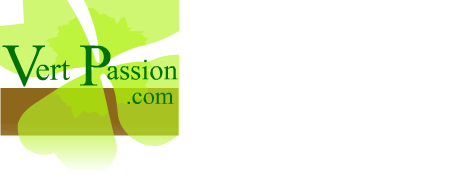 Logo Vp Holding