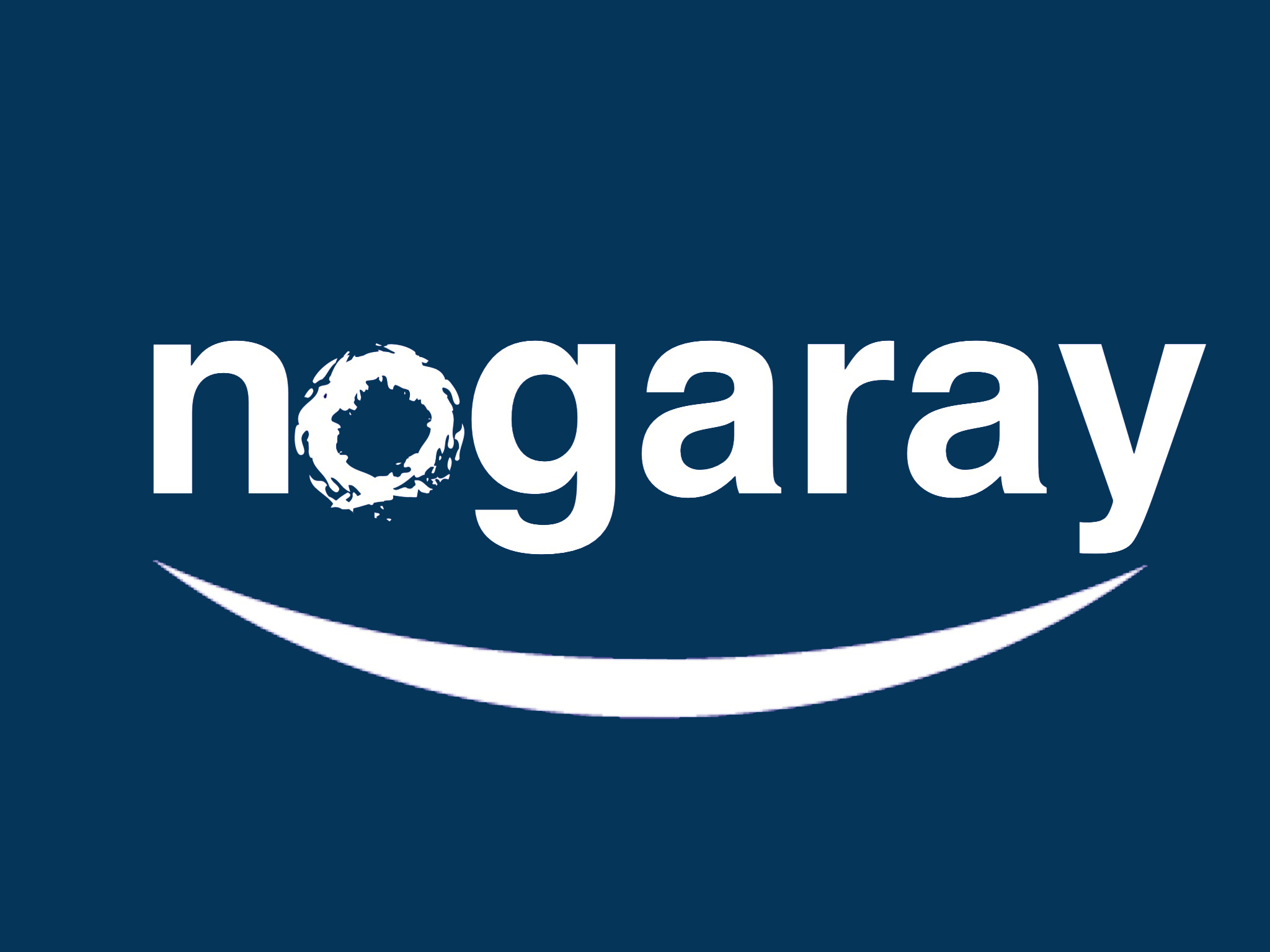 Logo Nogaray Conseil
