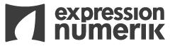 Logo Expression Numerik