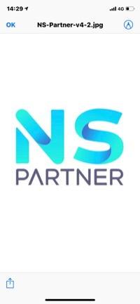 Logo Ns Partner
