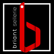 Logo SELLERIE BRIANT