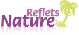 Logo Reflets Nature