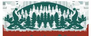 Logo Reseau Esprit Vosges