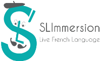 Logo Slimmersion