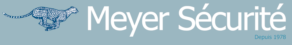 Logo Meyer Securite Ms