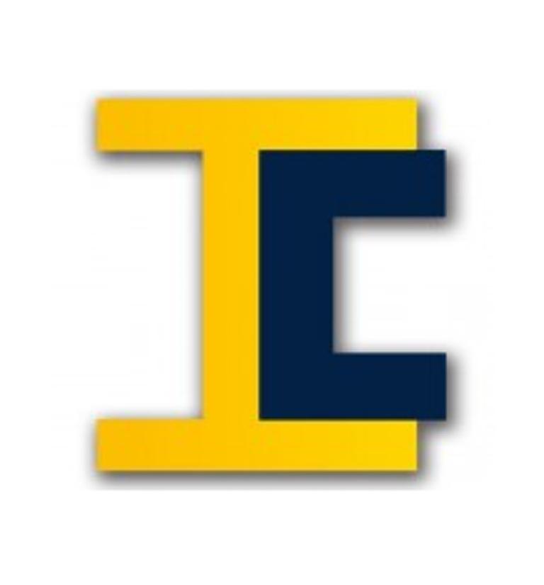 Logo IÉSEG Conseil