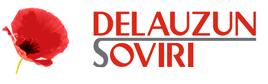 Logo Delauzun