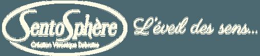 Logo Creation Veronique Debroise
