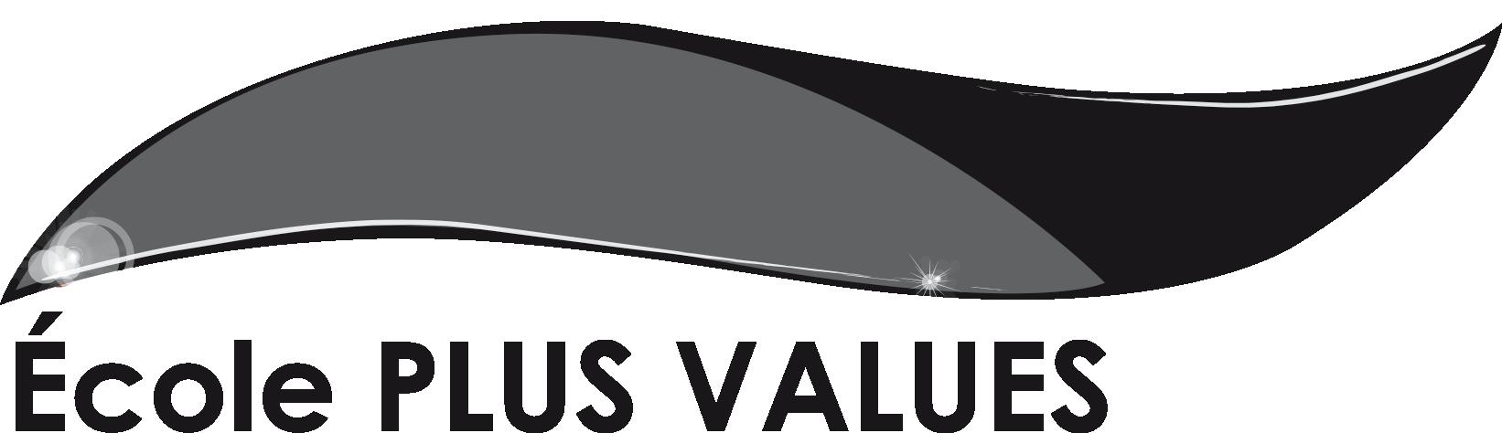 Logo Plus Values