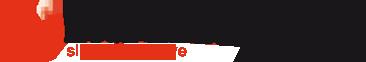 Logo Excellerator