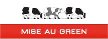 Logo Mise en Green