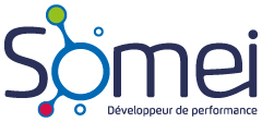 Logo Somei Med Etu Informatique