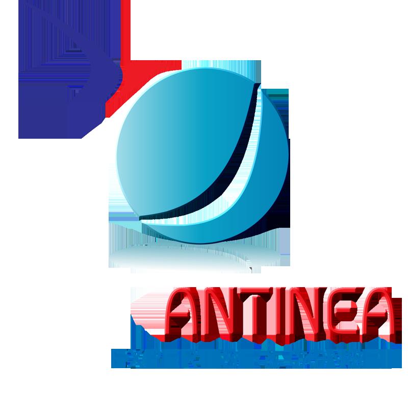 Logo Antinea Expertise et Conseil