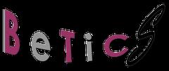 Logo Bur Etudes Tech Ing Conseil Seuzaret