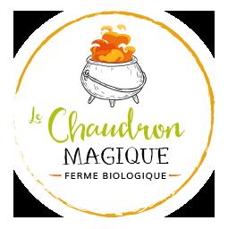 Logo Le Chaudron Magique