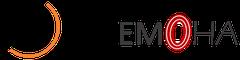 Logo + Sport Conseil