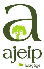 Logo Ajeip