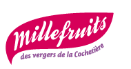 Logo Flash Fruits