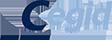 Logo Newmadis